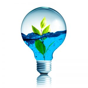 Környezetvédelem